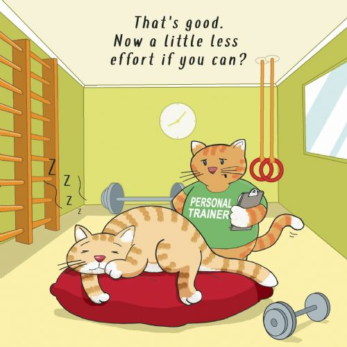 CAN90 - Cat Workout Card